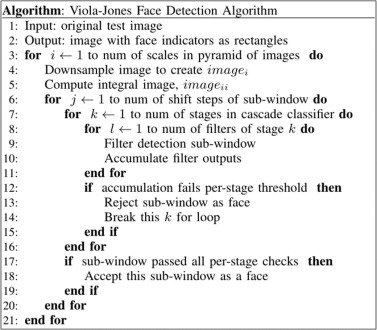 avm algoritmo