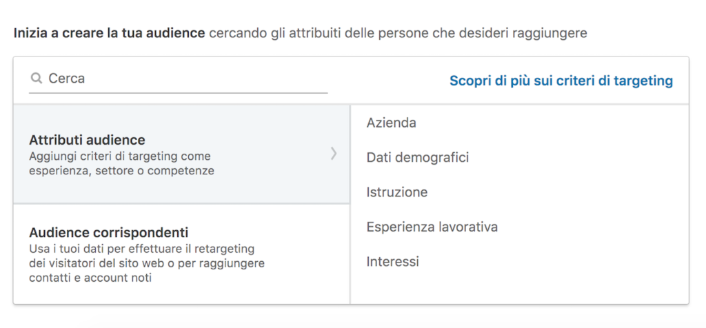 Target-Campagna-LinkedIn-Campaign-Manager