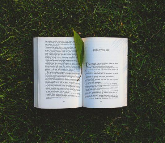 E-book e libro di carta, quale inquina meno. Foto di Kaboompics.com da Pexels